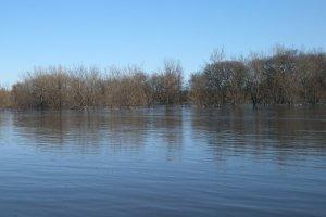 river flooding 2009