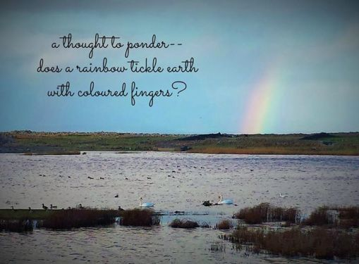 rainbow photo with haiku