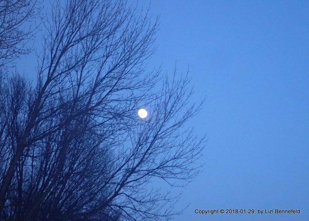Evening moon on 29 January 2018