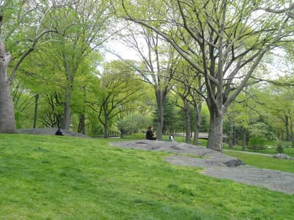 central park spring 2007