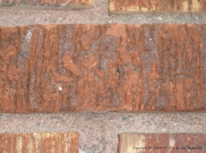 portion of a brick wall