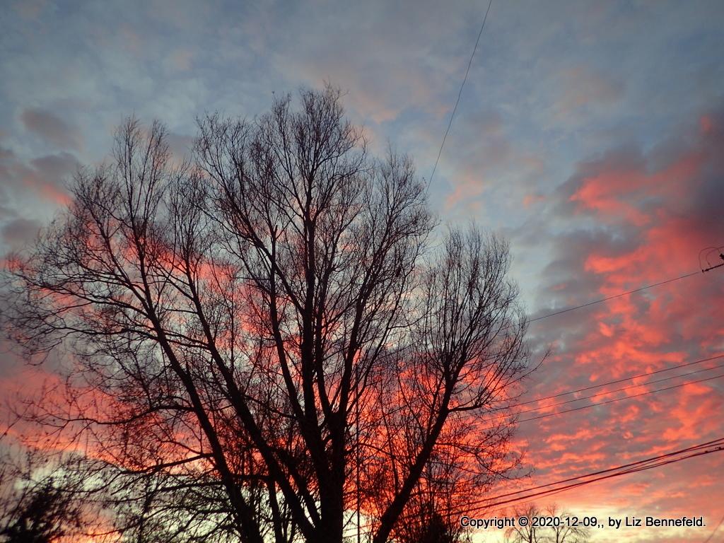 sunset, author's photograph