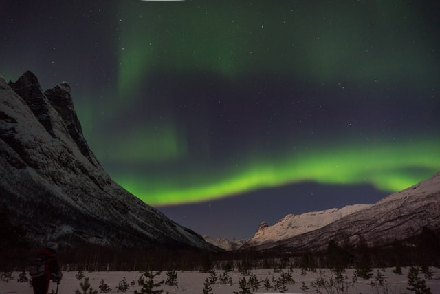 trees, valleys, mountains, northern lights